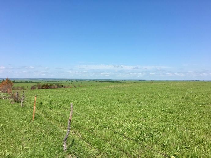 Wide Open Prairie of the Flint Hills